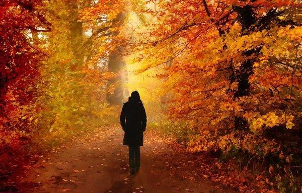 Qué nos pasa en otoño